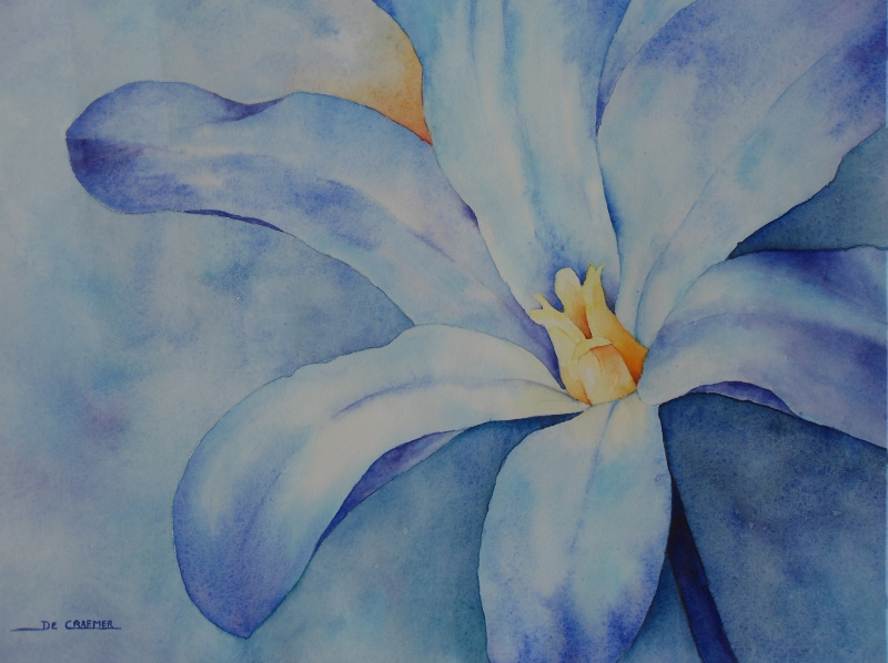 11- Blauwe bloem 2