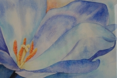 10 - Blauwe bloem